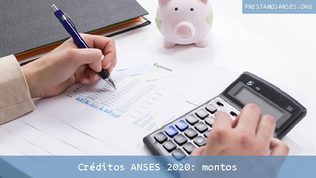 La cuota de los créditos ANSES 2020 no puede superar el 20% del ingreso mensual del solicitante