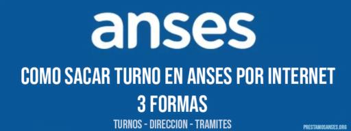Como sacar turno en Anses por internet